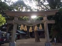 曇り空が残念...神社へお参り。[2]