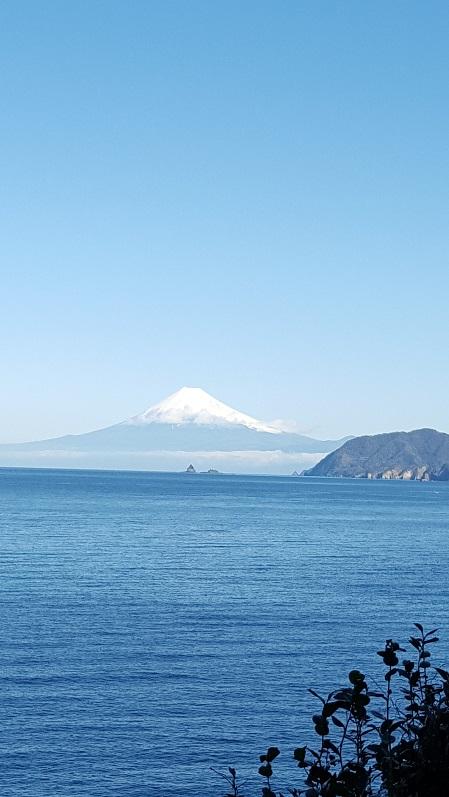 ザ・富士山! 3日連続@田子ボート![1]