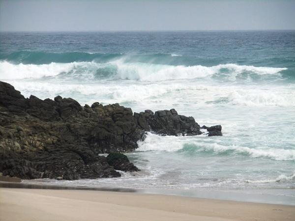 台風12号・・・・恐るべし 田子の海!![1]