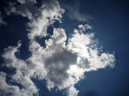 カエルアンコウより地形だね@雲見[1]