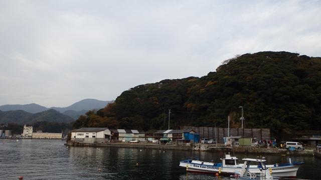 西風の為雲見から田子へ[3]