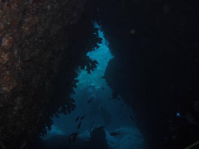 季節来遊漁登場で夏らしい雲見![2]