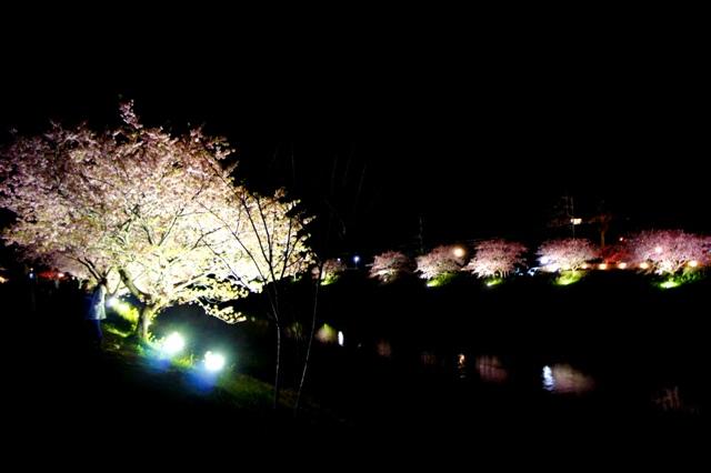 春〜spring〜[2]